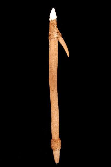 Pointe de harpon