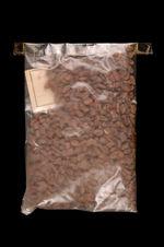 Echantillon végétal : graines