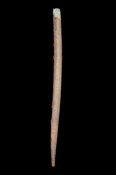 Etui de sabre