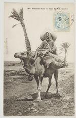 Méhariste dans les Oasis du Sud Algérien