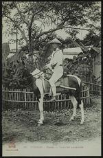 Cavalier annamite