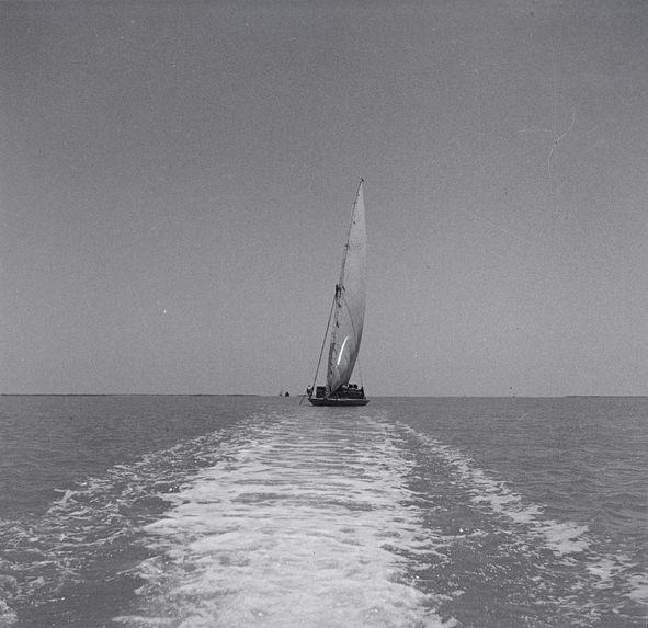Barque à voile sur le lac Menzaleh