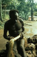 Meleun (Benhat) met un cache-sexe tressé autour d'une branche
