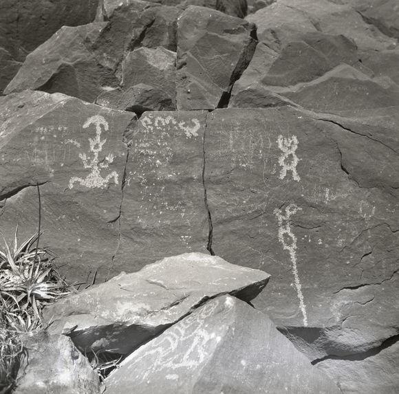 Sans titre [pétroglyphes]