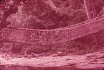 Pont de liane de Danané