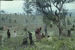 Sans titre [groupe de samburu parmi la végétation]
