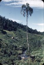 Habitation Betsimisaraka