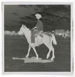 Vaqueros à cheval à la foire aux bestiaux