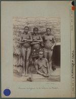 Femmes indigènes de la colonie de Natal