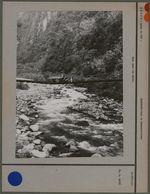 Pont dans les Andes