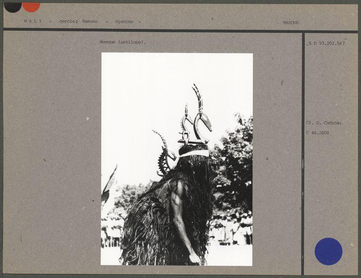 Masque (antilope)