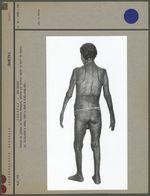 Statue en plâtre du Charrua Sénaqué