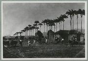 Guadeloupe ; habitation à Capesterre
