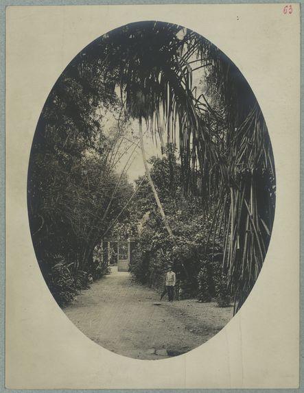 Sortie du jardin botanique de Saint-Pierre