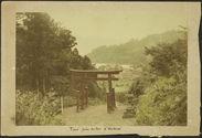 Tori près d'un lac d'Hakoné