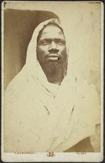 Race noire du Sahara