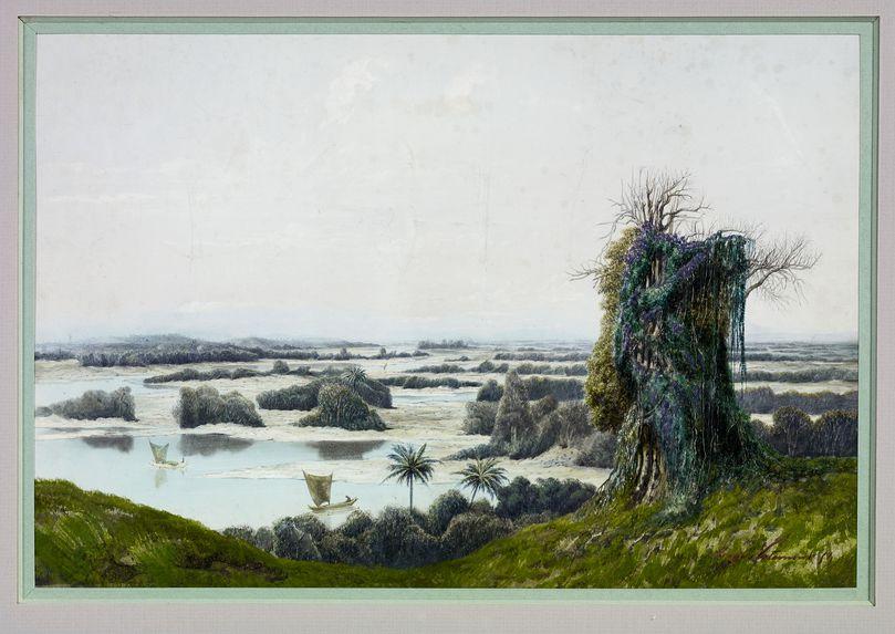 Marécage à Madagascar