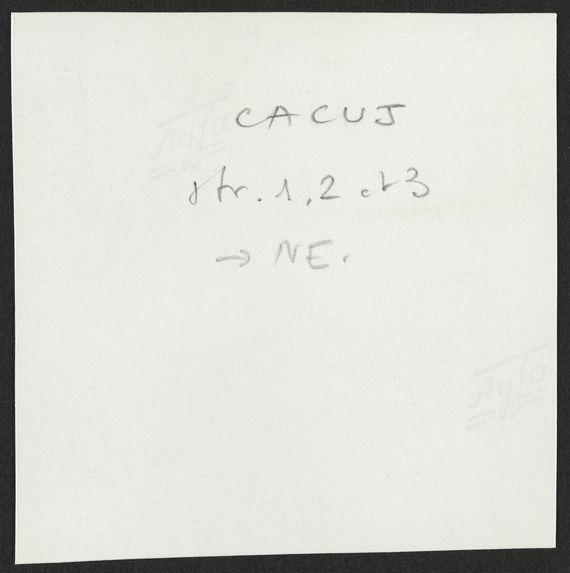 Site de Cacuj [tertres arborés]