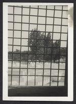 Fez Mellah, cimetière juif