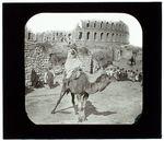 El-Djem. Le Colisée et Méhariste arabe