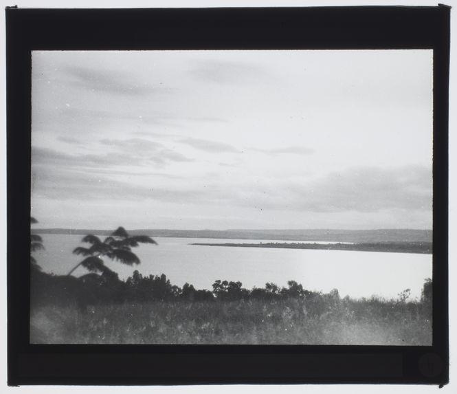 Sans titre [paysage composé d'une étendue d'eau vue depuis la végétation]